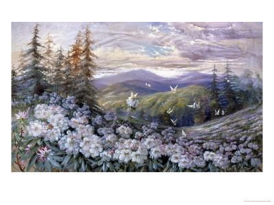 Rhododendrons and Butterflies