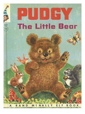 Pudgy Little Bear