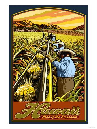 Hawaiian Pineapple Harvest