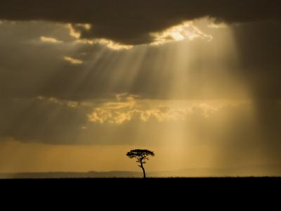 Mystical Sunset on Camp in the Maasai Mara, Kenya