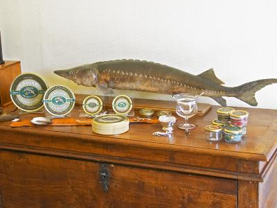 Table of Fish, Caviar, Tins, Glass Jars with Pate