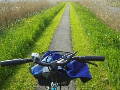 Bicycle Trail, Kinderdijk, Netherlands