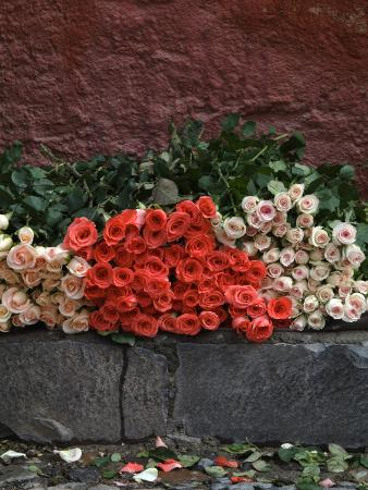 Roses for Sale on Street, San Miguel De Allende, Mexico