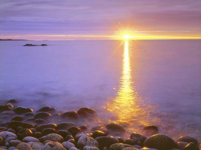 Sunrise on Fog and Shore Rocks on the Atlantic Ocean, Acadia National Park, Maine, USA