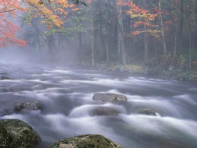 Big Moose River Rapids in Fall, Adirondacks, New York, USA