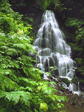 Fairy Falls Tumbling Down Basalt Rocks, Columbia River Gorge National Scenic Area, Oregon, USA