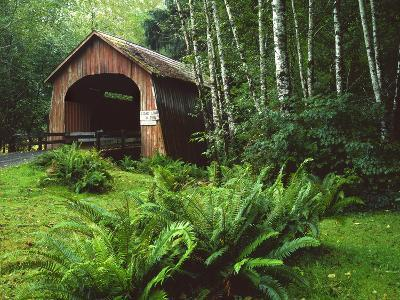 Yachats River Covered Bridge in Siuslaw National Forest, North Fork, Oregon, USA