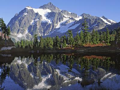 Mt. Shuksan in the Fall with Red Blueberry Bushes, North Cascades National Park, Washington, USA