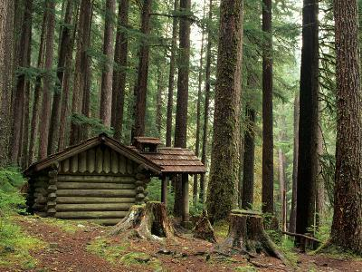 Rainforest and Sol Duc Shelter, Sol Duc Valley, Olympic National Park, Washington, USA