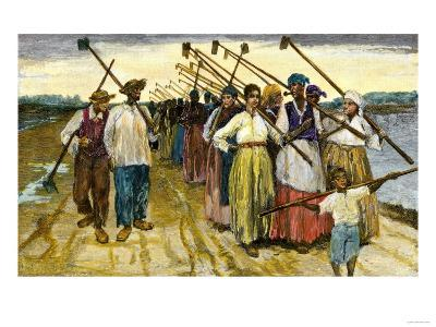 African-American Slaves Returning from the Fields at Twilight on a Sugar Plantation, c.1800