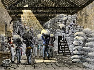 Sacks of Coffee Carried Into a Warehouse in Brazil, c.1800