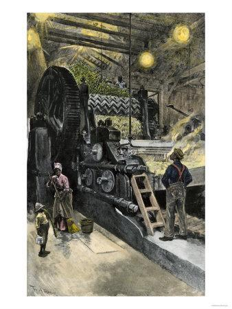 African-American Workers Operating a Cane-Crushing Machine in a Sugar House at Bayou Teche, c.1900