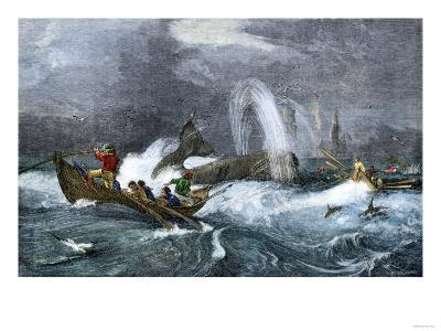 South Sea Whaling