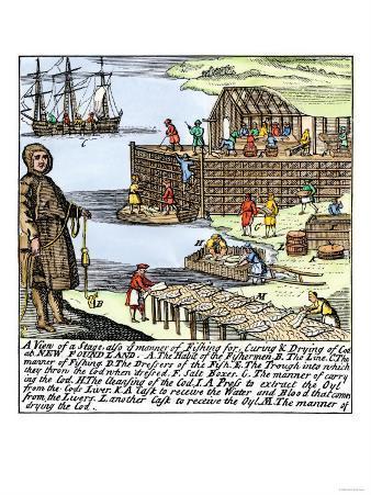 Cod Fishermen Drying and Salting Fish on the Newfoundland Coast, c.1700