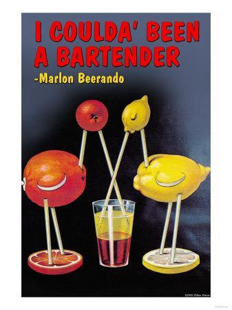 I Coulda Been a Bartender