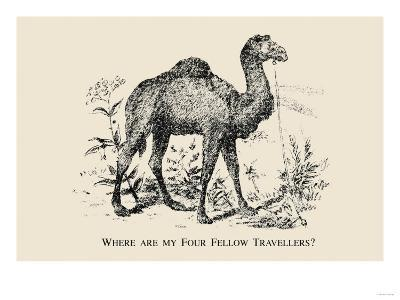 Optical Illusion Puzzle: Four Fellow Travellers