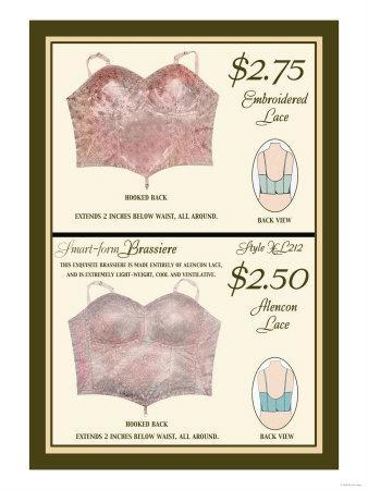 Embroidered Lace and Alencon Lace