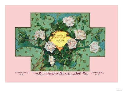 White Rose Soap