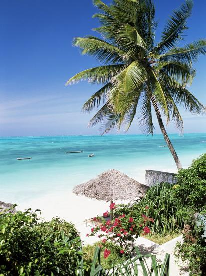View Through Palm Trees Towards Beach And Indian Ocean Jambiani Island Of Zanzibar Tanzania