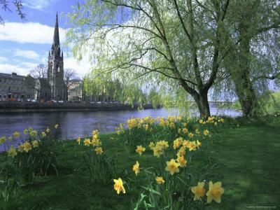 City in Spring, Perth, Perthshire, Tayside, Scotland, UK, Europe