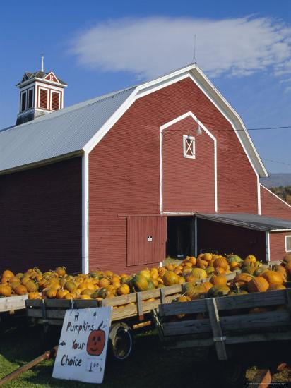 Pumpkins For Sale In Front Of A Red Barn Vermont New
