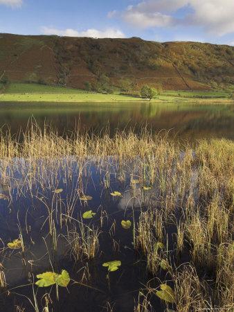 Autumn Colours, Watendlath Tarn, Borrowdale, Lake District National Park, Cumbria, England, UK