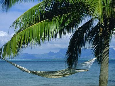Hammock, Tahiti, Society Islands, French Polynesia, South Pacific Islands, Pacific