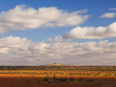 Outback Scenery, Near White Cliffs, New South Wales, Australia, Pacific