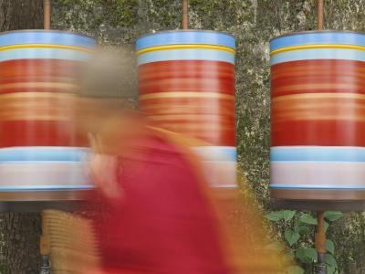 Buddhist Monk Passing Prayer Wheels, Mcleod Ganj, Dharamsala, Himachal Pradesh State, India, Asia