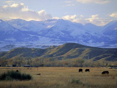 Looking West Towards the Rocky Mountains from Big Timber, Sweet Grass County, Montana, USA