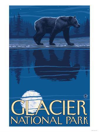 Bear in Moonlight, Glacier National Park, Montana