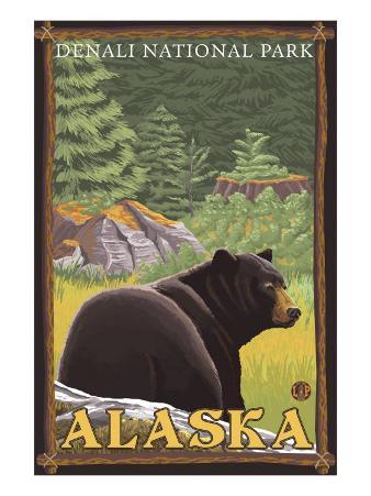 Black Bear in Forest, Denali National Park, Alaska