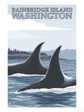Orca Whales No.1, Bainbridge Island, Washington