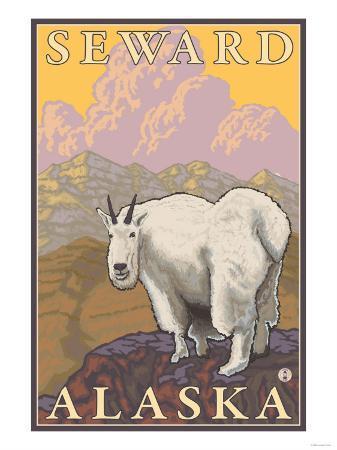 Mountain Goat, Seward, Alaska