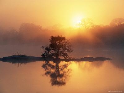 Sunrise, Kruger National Park, South Africa, Africa