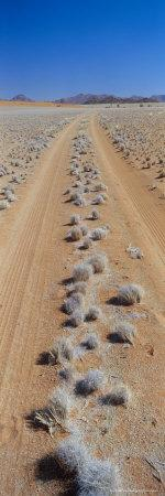 Track Through Sand with Scrub, Namib Road, Namib Naukluft Park, Namib Desert, Namibia, Africa