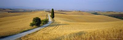 Road Running Through Open Countryside, Orcia Valley, Siena Region, Tuscany, Italy