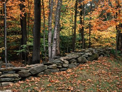 Stone Fence in Vermont, USA