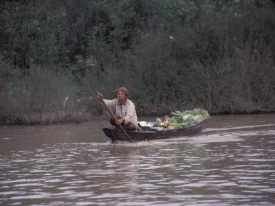 Man with Produce Filled Canoe in Largest Freshwater Lake in Asia, Tonle Sap Lake, Cambodia