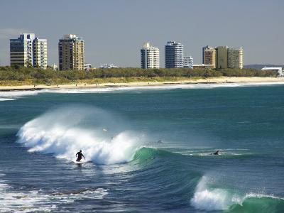 Surfers, Alexandra Headland, Sunshine Coast, Queensland, Australia