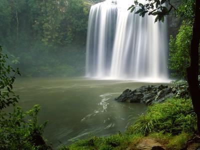 Whangarei Falls, Whangarei, Northland, New Zealand
