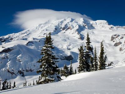 Mt. Rainier after Winter Snowstorm, Mt. Rainier National Park, Washington, USA