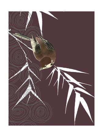 Finch in Dusk