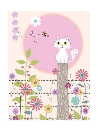Kitty Kat Summer