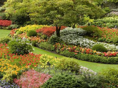 Butchart Gardens in Bloom