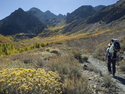 Backpacking in the Fall Colors at Mcgee Creek near Mammoth Lakes, California