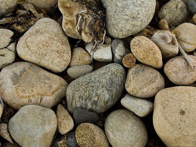 Close-Up of Rocks on a Beach, Block Island, Rhode Island