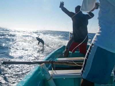Hand Lining for Tuna in the Pacific Off the Coast of Puerto Angel, Mexico