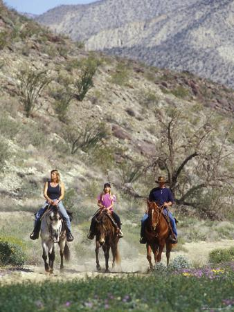 Family Riding their Horses on the Anza Trail