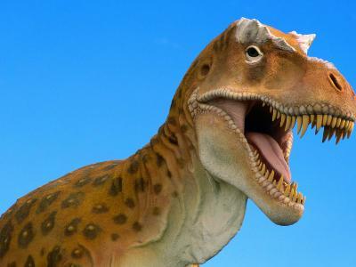 Full-Size Replica of a Tyrannosaurus Rex